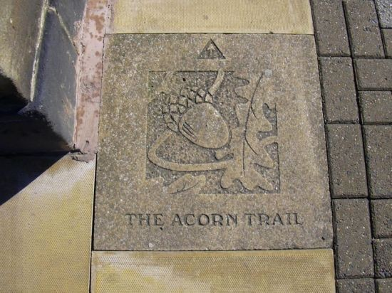 """The Acorn Trail"" Cannon Street"