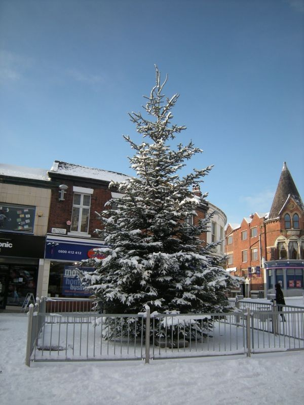 A snow covered Christmas tree