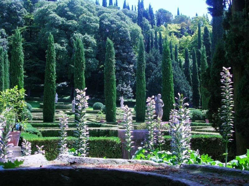 Classical Italian planting of Cypress trees