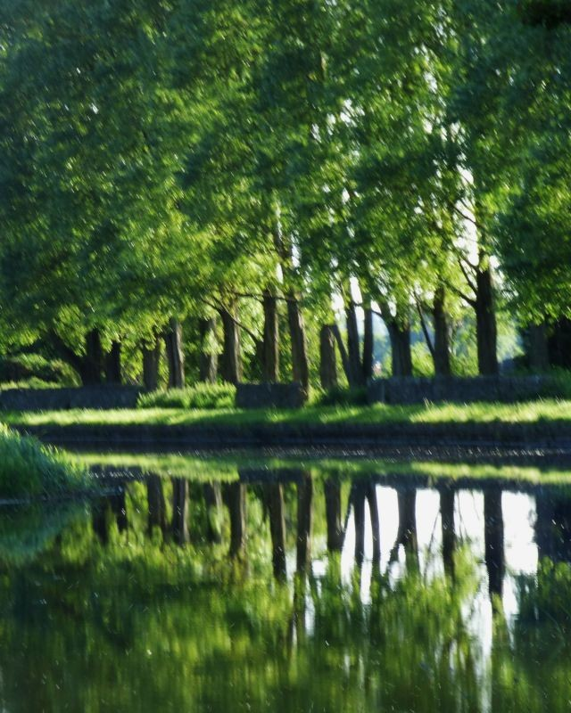 The canal In Clayton le Moors