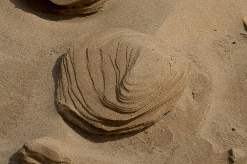 Sand sculpture made by the wind on Formby beach
