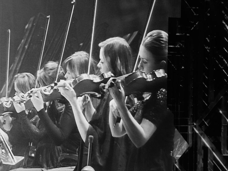 String section of the Orchestra