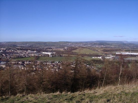Views from coppice