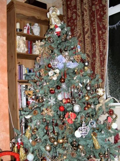 Our Christmas Tree.